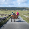 Carriage Through the Countryside