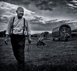Farmer and his wagon.  Ireland, 2013.