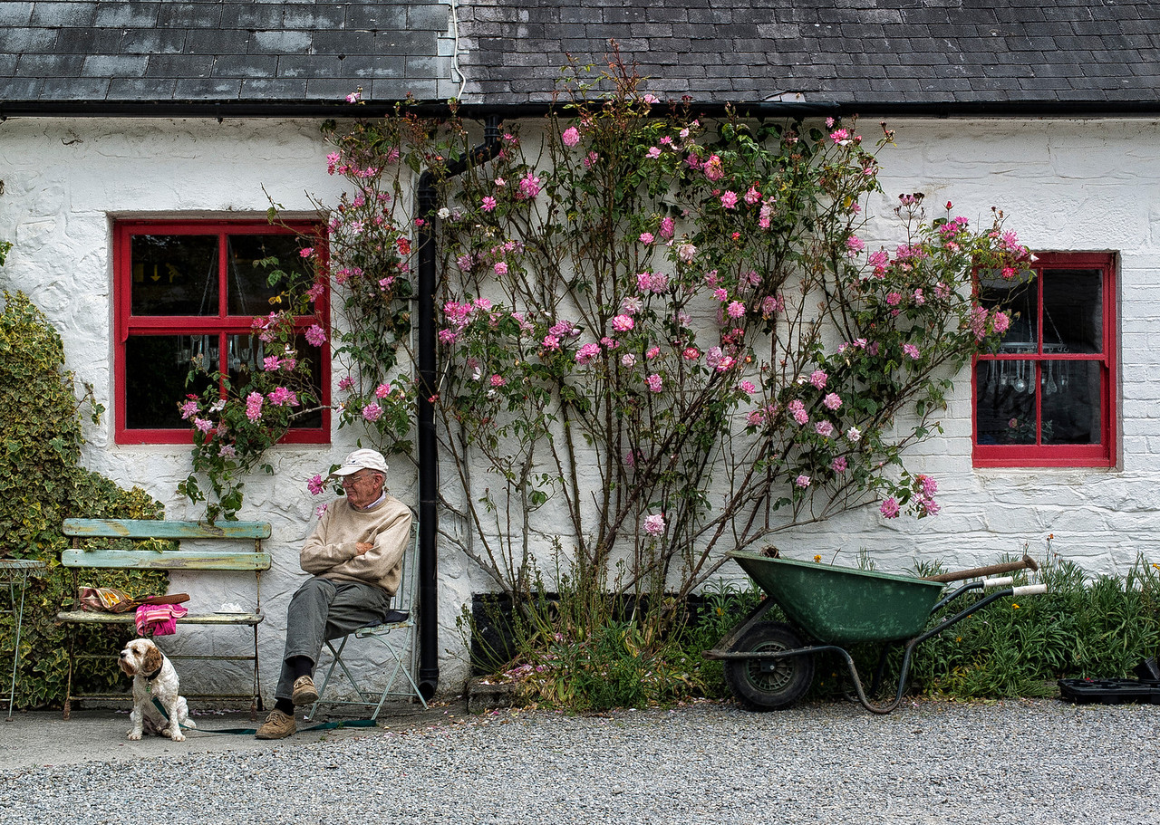 A man and his dog.<br /> <br /> Avondale, Ireland, 2013.