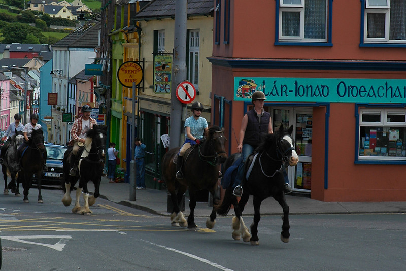Afternoon Commute in Dingle