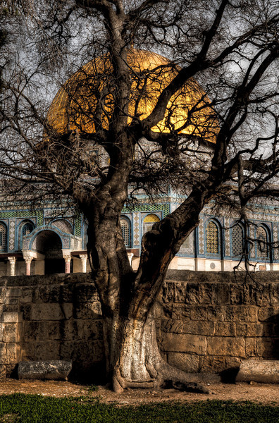 """During the Crusades the Dome of the Rock was given to the Augustinians, who turned it into a church while the Al-Aqsa Mosque became a royal stable. The Knights Templar, who believed the Dome of the Rock was the site of the Temple of Solomon, later set up their headquarters in the Al-Aqsa Mosque adjacent to the Dome for much of the 12th century. The """"Templum Domini"""", as they called it, was featured on the official seals of the Order's Grand Masters, and it became the architectural model for Templar churches across Europe."""