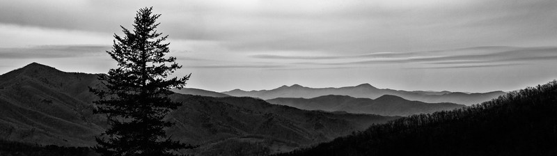 Pisgah National Forest Mountain Range