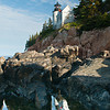 Bass Harbor Light and Reflection