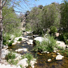 Holcomb Creek from the bridge on Dishpan Springs