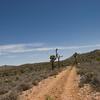 On the high plateau heading towards the back side of Big Bear