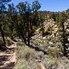 Scenery along Heartbreak Ridge trail.