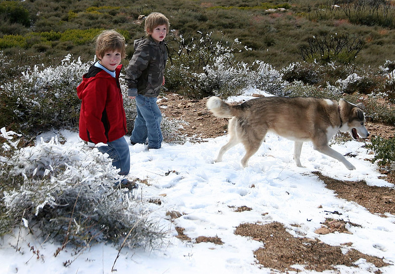 The twins, Skyler and Dakota Jones play in the snow