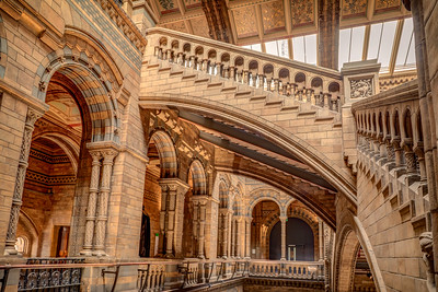 Hintze Hall architecture in Natural History Museum