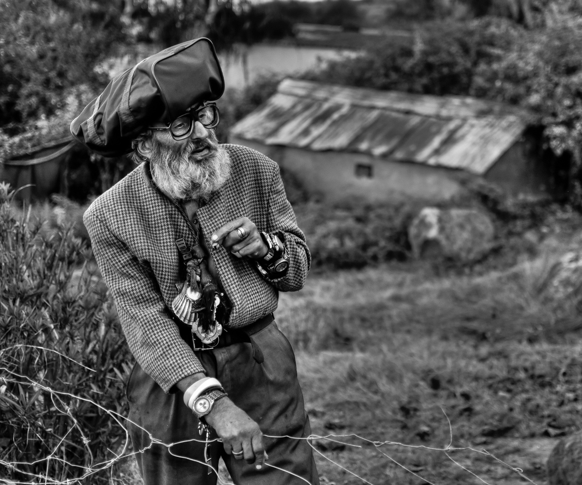 Francisco lives alone in a small derelict farm house called 'Cortijo La Gorda', among the few trees that remain after a motorway was build just metres away. The farm house used to be a tavern in years gone by, run by Francisco's grandparents. <br /> <br /> Once Francisco's grandfather died his parents moved in providing Francisco and his sister with a new home. Over the years his parents passed away, and his sister left home. Today Francisco is alone. <br /> <br /> He now lives in the company of a bunch of small dogs. His home, in danger of collapsing on him, is all he's got. He spends his days relaxing among the mountains of junk which he collects from the surrounding area.