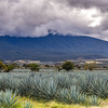 2016 Tequila Mexico