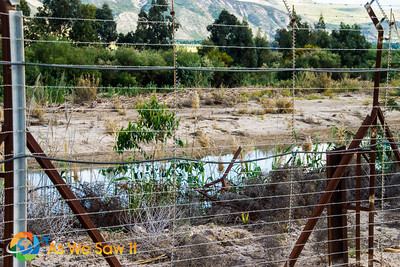 This place is more logically to be closer to where Jesus was baptized by John, since he just came out of the Galilee and went into the wilderness in the far background.