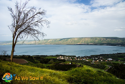 Hiking along the Sea of Galilee leads you to many fantastic views like this one.