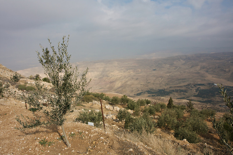 The Promised Land - Mt. Nebo