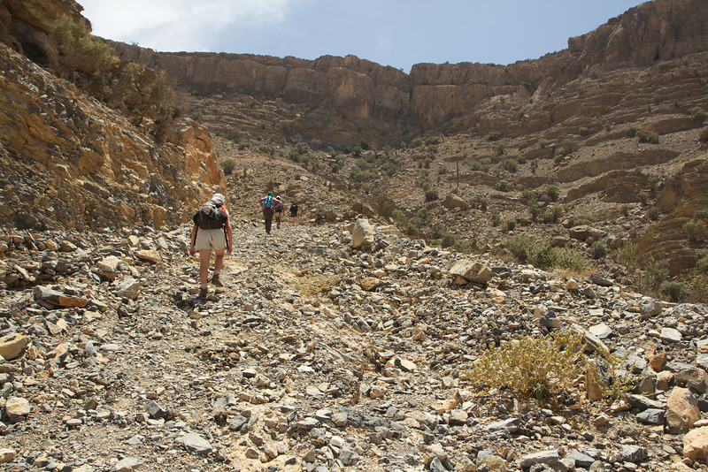 Hiking in the wadi
