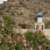 Mosque and rose bush
