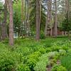 Log cabin in Munsinger Gardens