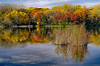 Snail Lake Fall Color - 1
