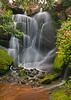 Minnesota Arboretum waterfalls, May, #0378