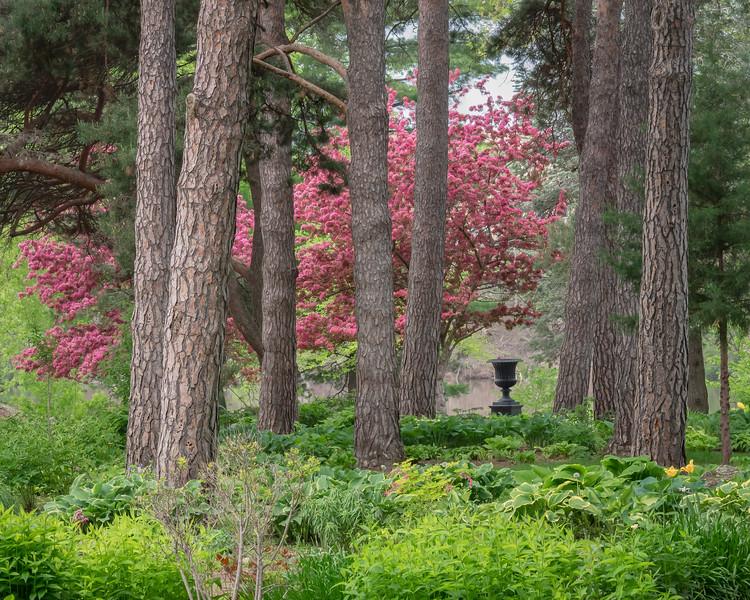 Spring in Munsinger Gardens