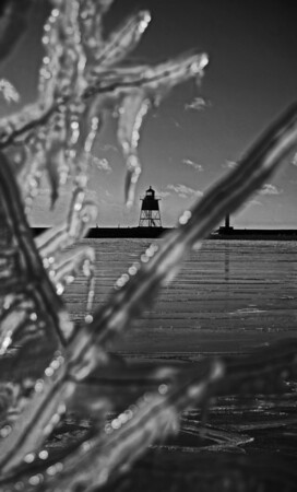 Minnesota tree ice, Grand Marais, #0637