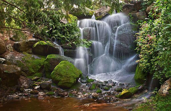 Arboratum Falls, #0377
