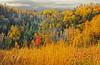 Looking toward Lake Superior from Moose Mountain Caribou ski hill, Lutsen, #0474,