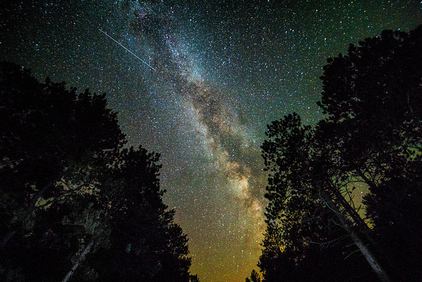 Milky Way over St. Croix State Park, Mn.,#1431,