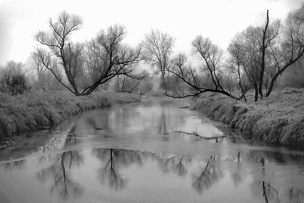 Frozen Rice Creek, Arden Hills, Mn., #0590