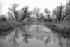 Frozen Rice Creek, Arden Hills, Mn., #0590