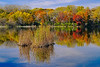 Reflections of fall color at Snail Lake, #1231