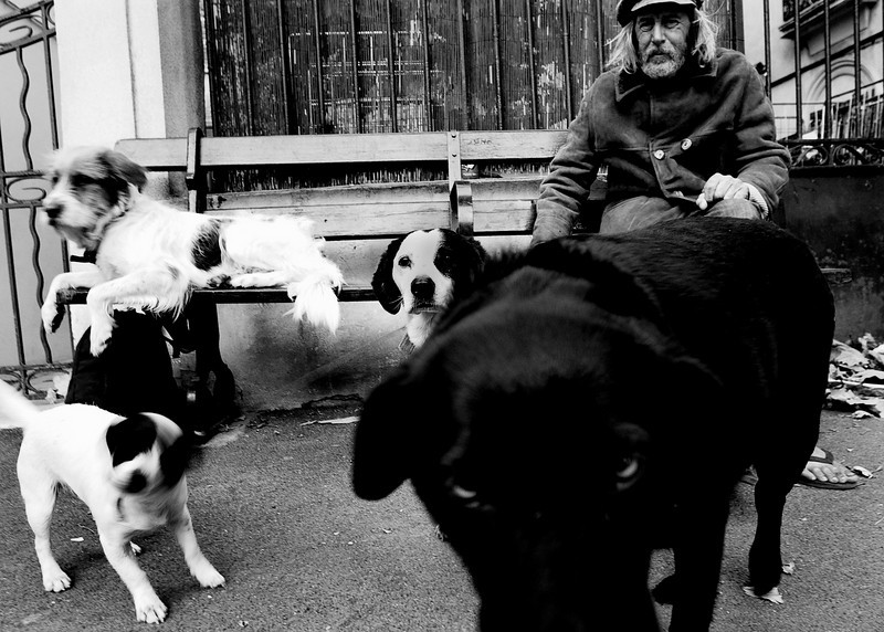 The other side of St Tropez' glitzy facade.  A true vagabond and his dogs, living their life on the streets.