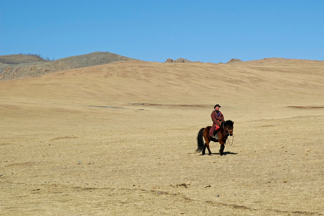 Young Mongolian horse rider in Gobi Desert. Central. Mongolia