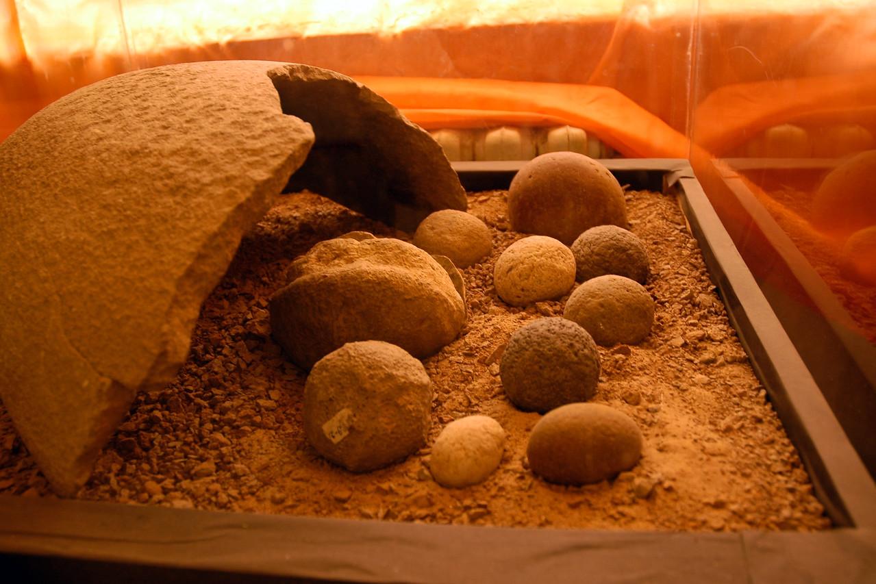 Fossils of Dinosaur eggs and bones found in Gobi Desert, Mongolia.