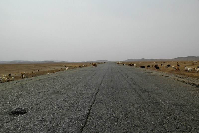 Long and empty roads on the Mongolian highway. Back on the road. This time towards Erdene Zuu which is in Övörkhangai Province, in the town of Kharkhorin (near Karakorum).