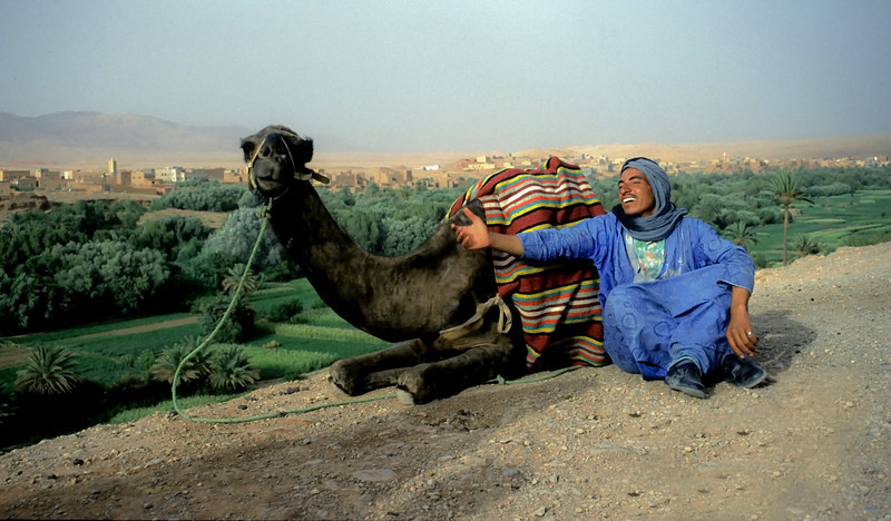 Bedouin and his camel.<br /> <br /> Er Rachidia, Morocco, 1995.
