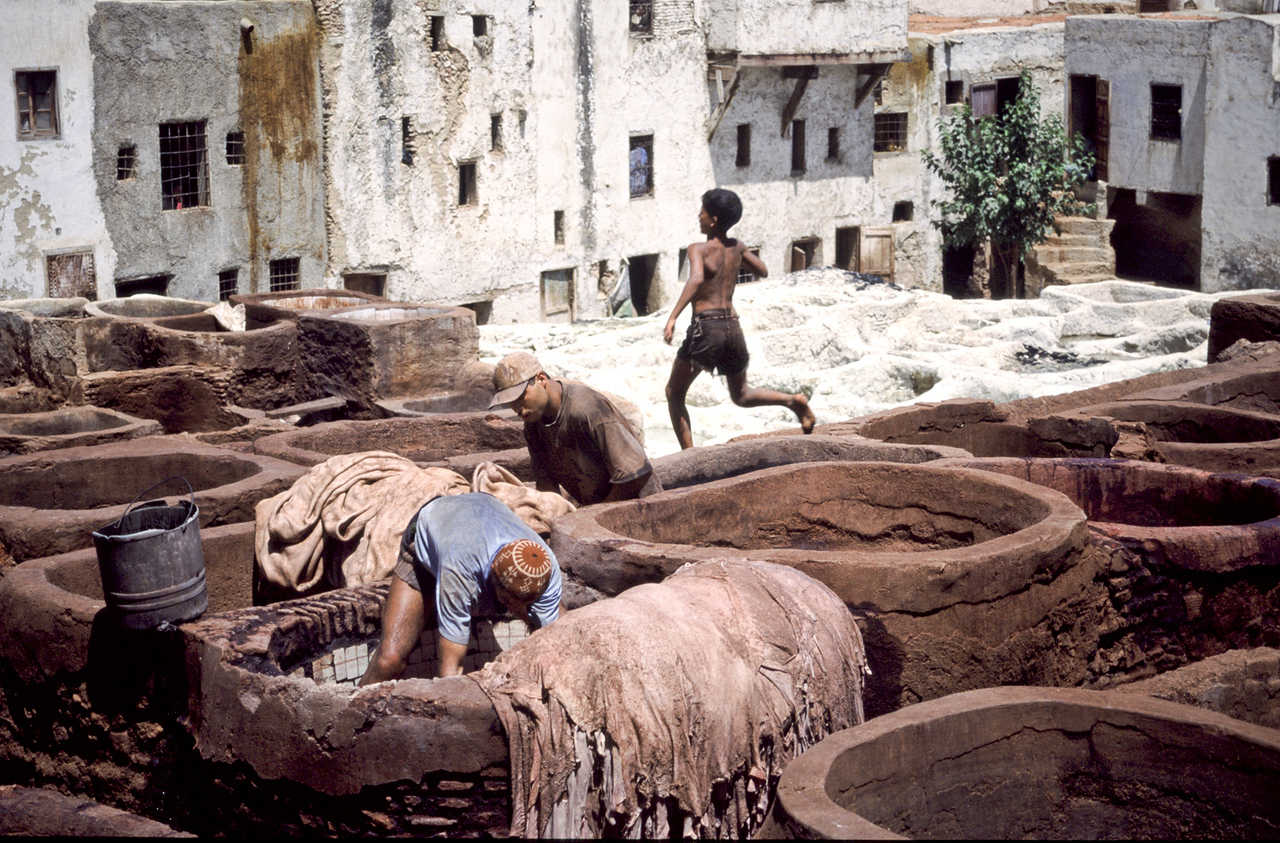Boy working in the tanneries.<br /> <br /> Fez, Morocco, 2010.