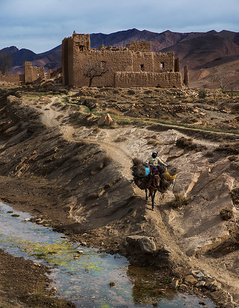 A woman returning home after spending the day working in the fields.  Tamtetoucht, Morocco, 2018