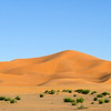 Sanddune in the Sahara desert