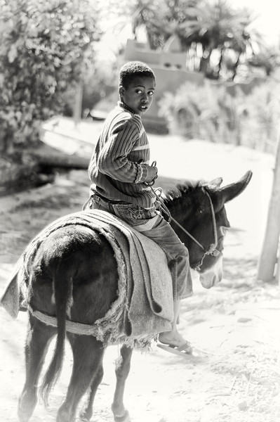 Hamza is a delightful small boy who accompanied me around the palmeraie were he was brought up. His father past away some years ago and his mother now works in Kasbah ait Abu found inside the palmeraie.<br /> <br /> Skoura, Morocco, 2010.
