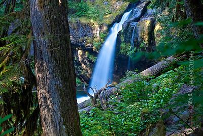 Iron Creek Falls (near Mt. St. Helens, WA)