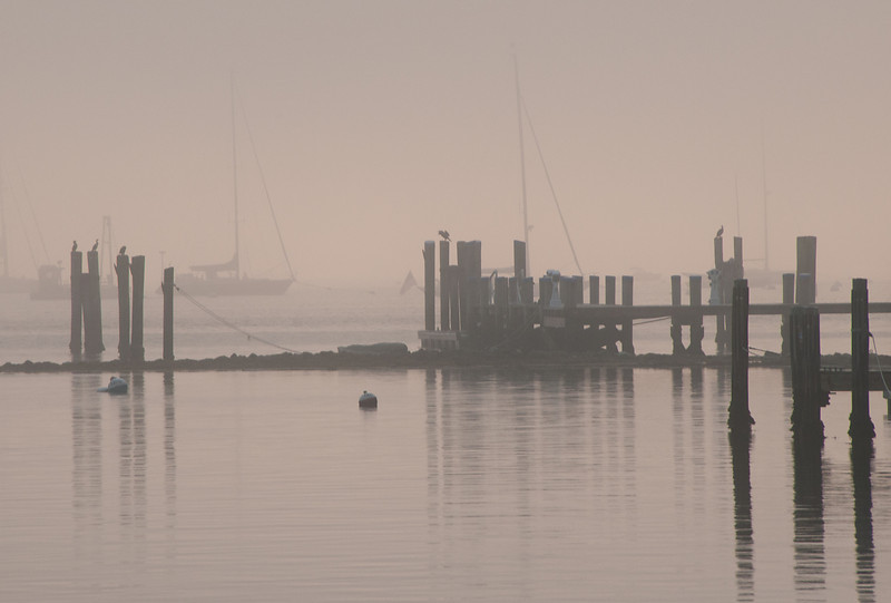 Nantucket Harbor Morning Mist