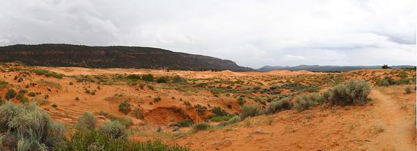 Panorama1-Coral-Pink-Dunes