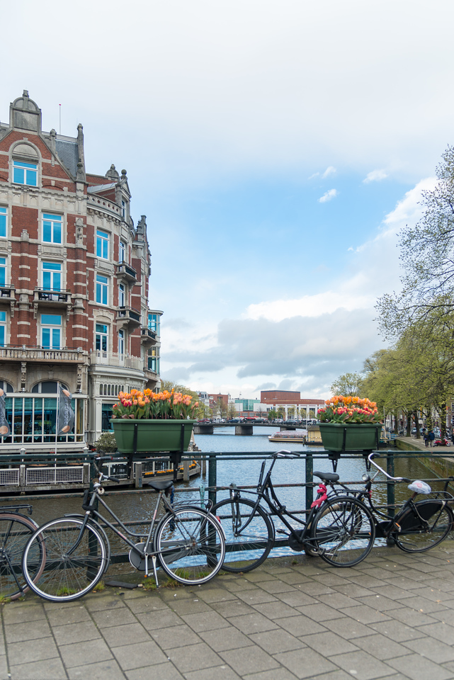 Cycles and tulips near Statue of Lady Fortune, Amsterdam, Netherlands, Europe.