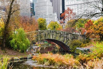 Central Park_Nov 2015