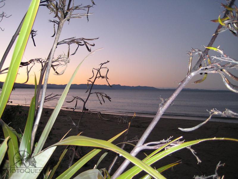 Able Tasman National park