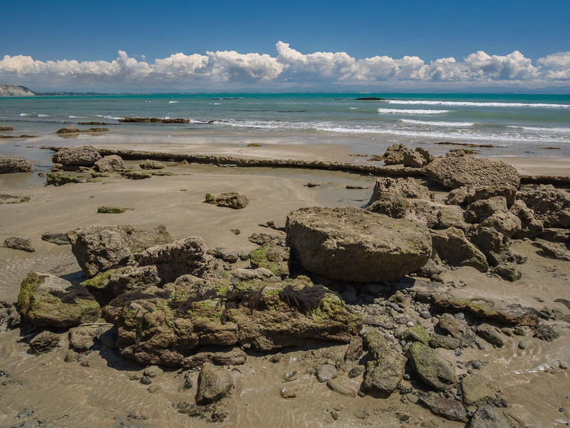 At low tide on a sunny day, clouds hang on the horizon and algae clings to rocks protruding from the sand along the beach at Cape Kidnappers on Hawke's Bay New Zealand.