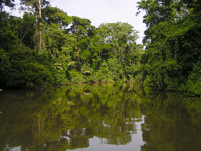 Tortuguero National Park, Costa Rica