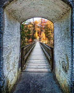 Bridge over Turkey Run