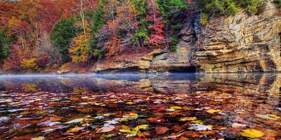 Autumn on Turkey Run