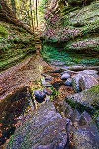 Mossy hideaway